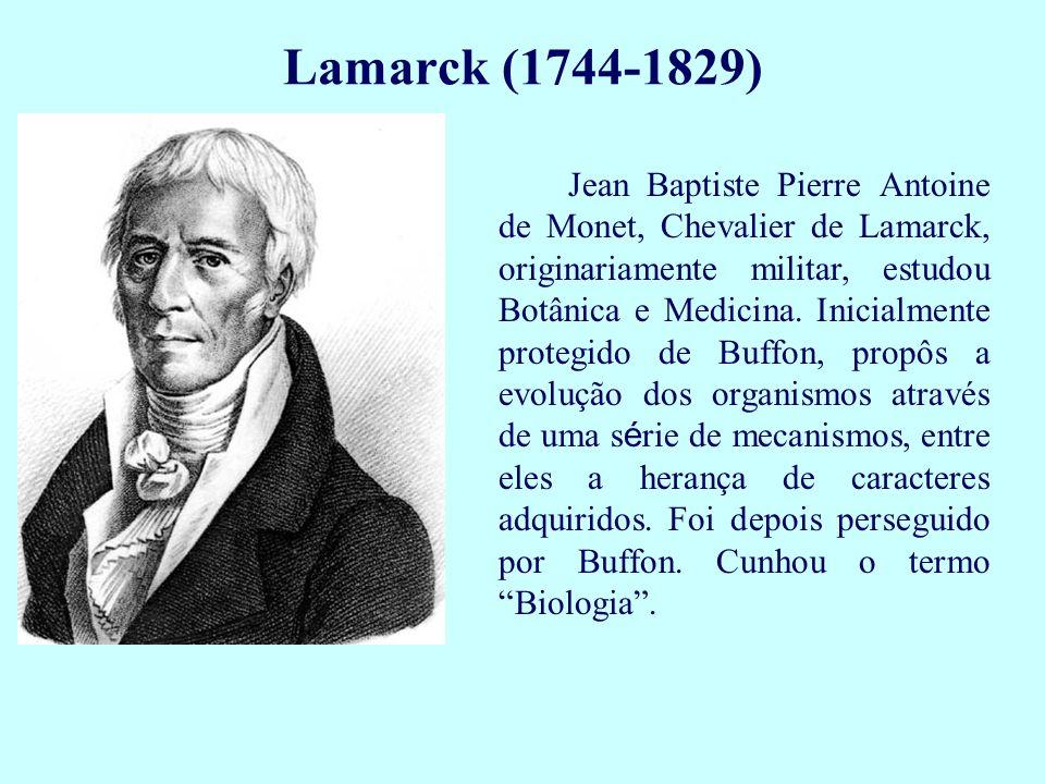 Jean Baptiste Pierre Antoine de Monet, Chevalier de Lamarck, originariamente militar, estudou Botânica e Medicina. Inicialmente protegido de Buffon, p