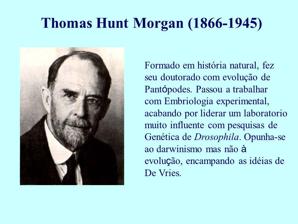 Formado em história natural, fez seu doutorado com evolução de Pant ó podes. Passou a trabalhar com Embriologia experimental, acabando por liderar um