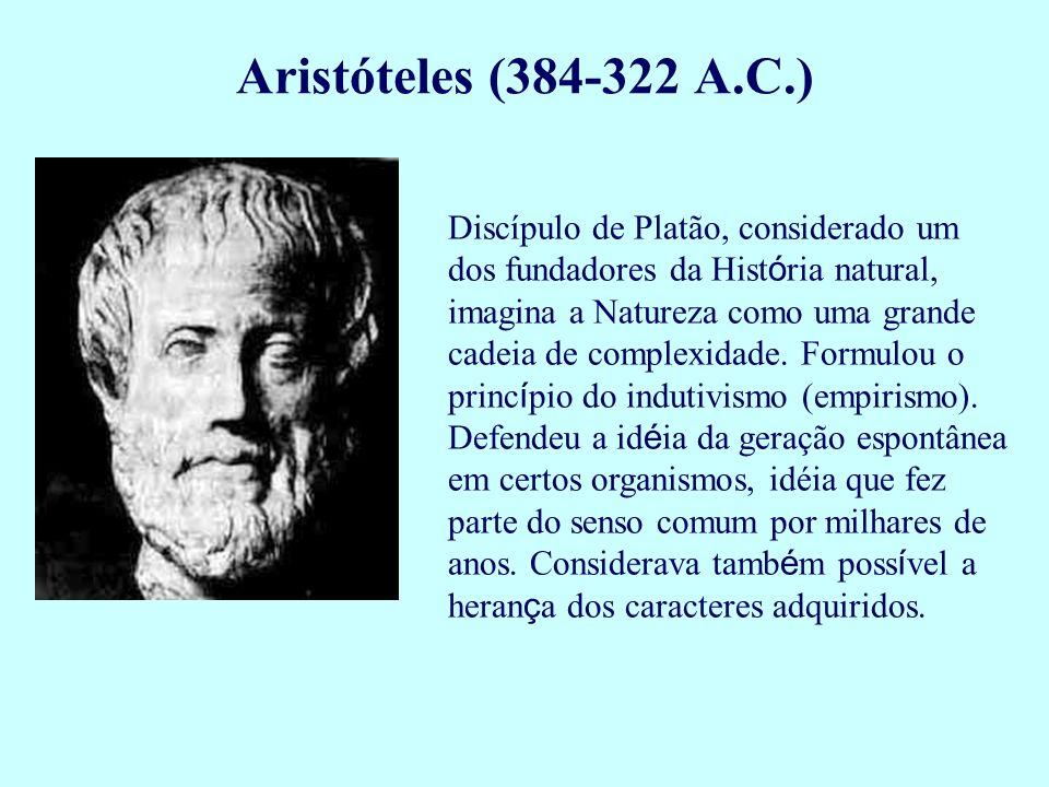 Discípulo de Platão, considerado um dos fundadores da Hist ó ria natural, imagina a Natureza como uma grande cadeia de complexidade. Formulou o princ