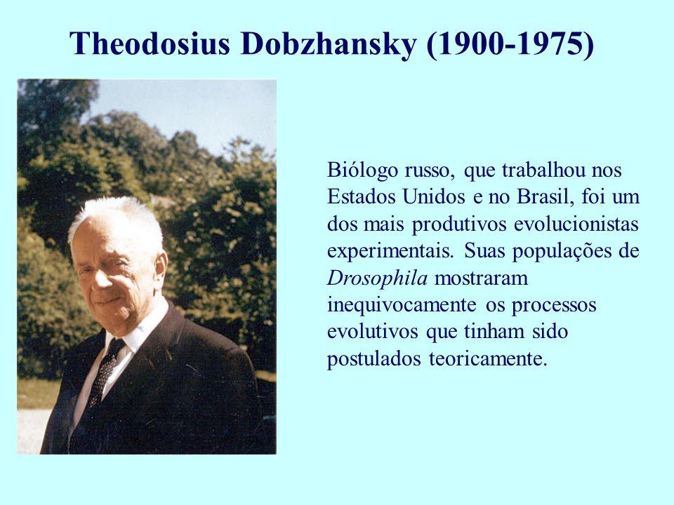 Biólogo russo, que trabalhou nos Estados Unidos e no Brasil, foi um dos mais produtivos evolucionistas experimentais. Suas populações de Drosophila mo