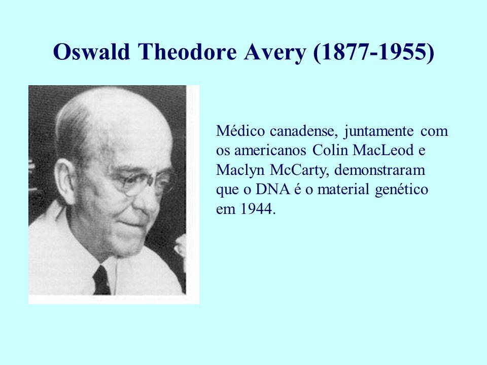 Médico canadense, juntamente com os americanos Colin MacLeod e Maclyn McCarty, demonstraram que o DNA é o material genético em 1944. Oswald Theodore A