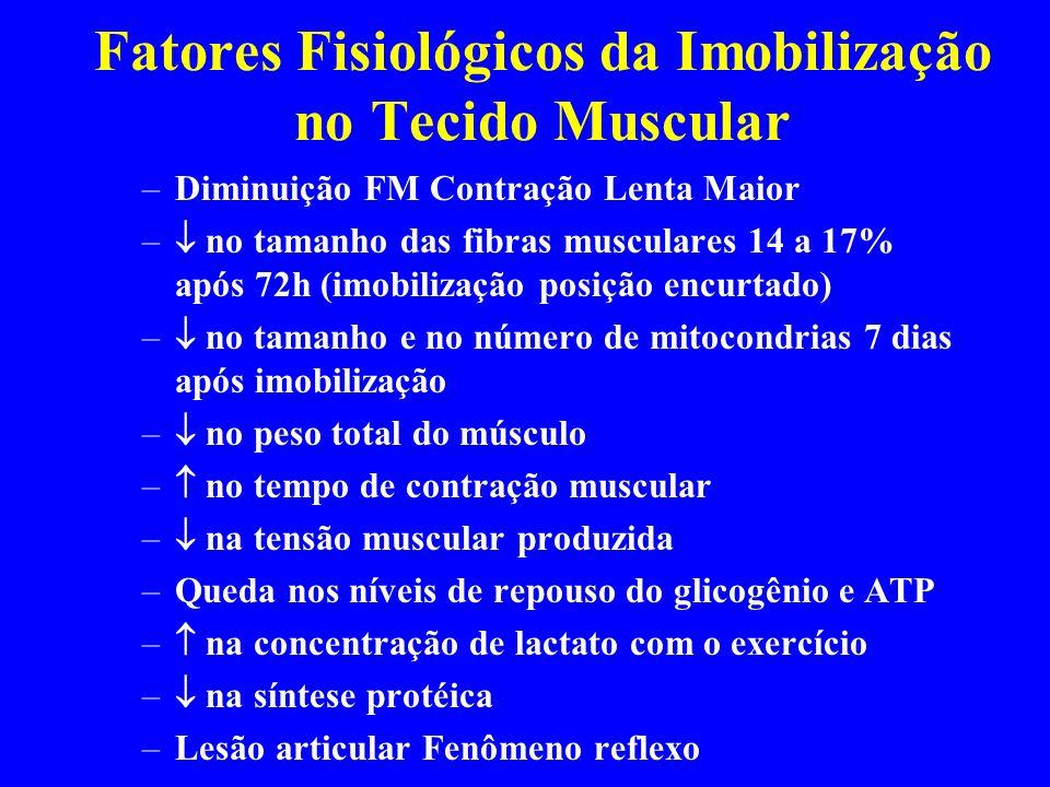Distensão Muscular III Grau –Rupturas completas da unidade músculo- tendínea –Dor aguda no momento da lesào –Incapacidade de contração muscular –Sinais Inflamatórios Evidentes