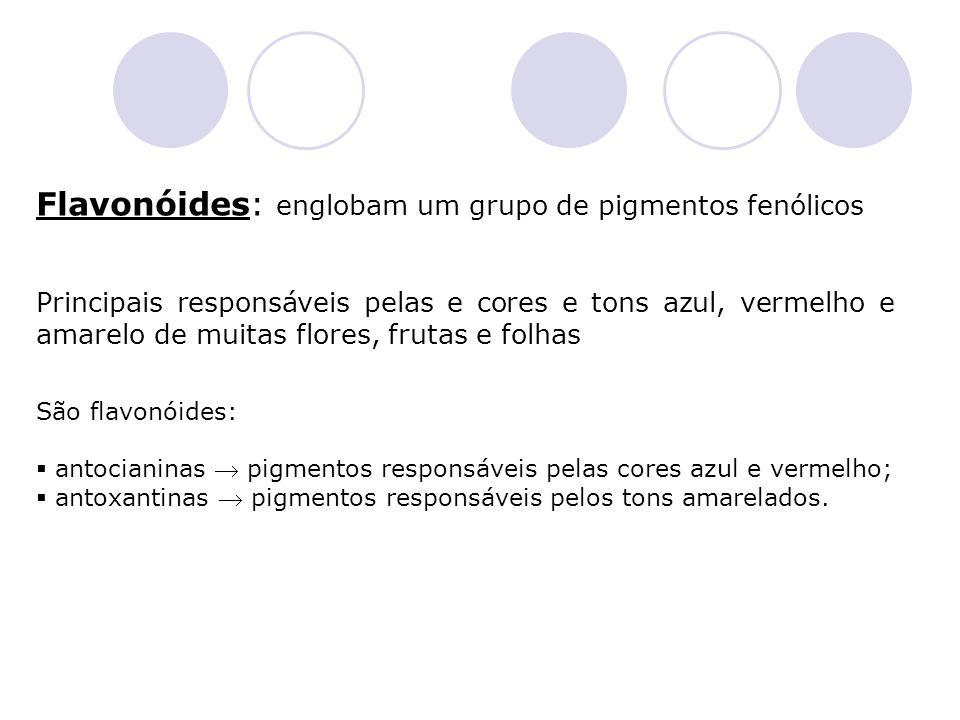 Flavonóides: englobam um grupo de pigmentos fenólicos Principais responsáveis pelas e cores e tons azul, vermelho e amarelo de muitas flores, frutas e