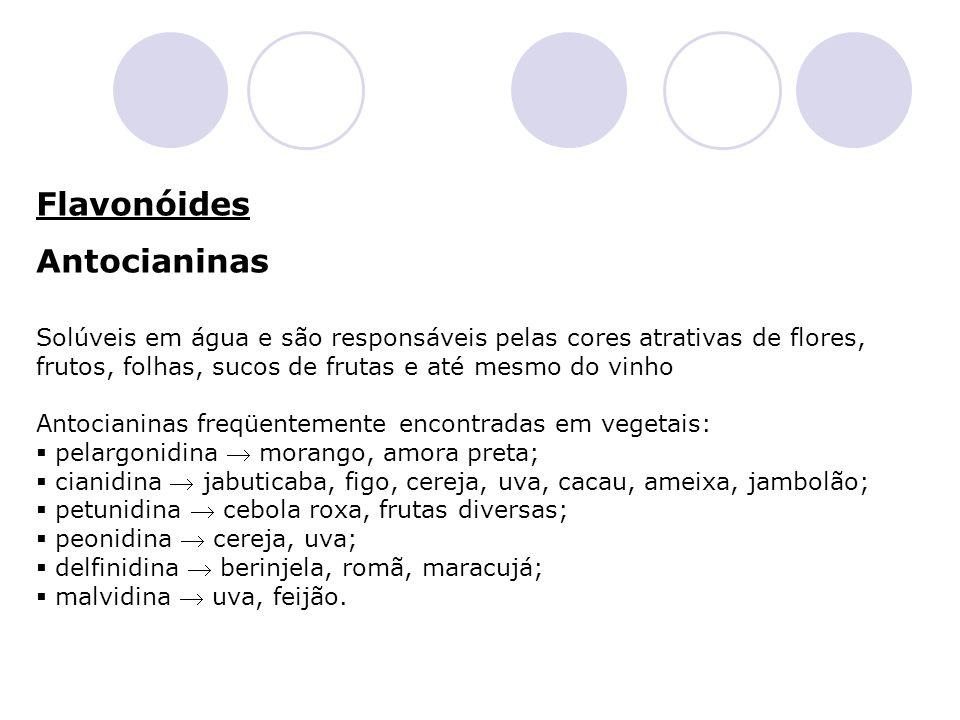 Flavonóides Antocianinas Solúveis em água e são responsáveis pelas cores atrativas de flores, frutos, folhas, sucos de frutas e até mesmo do vinho Ant