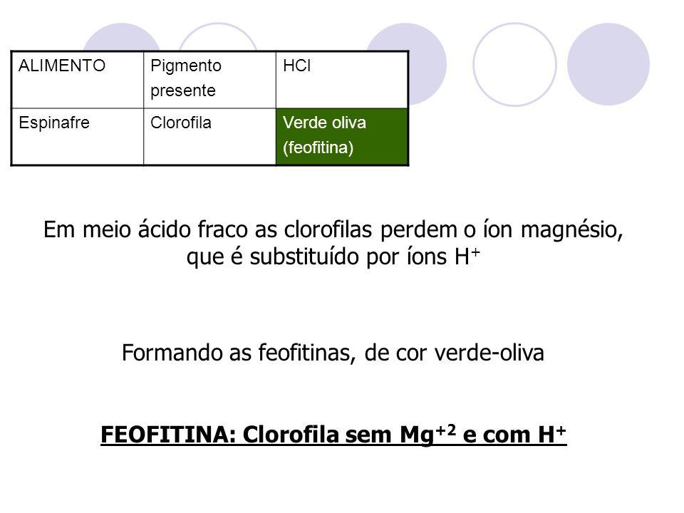 ALIMENTOPigmento presente HCl EspinafreClorofilaVerde oliva (feofitina) Em meio ácido fraco as clorofilas perdem o íon magnésio, que é substituído por