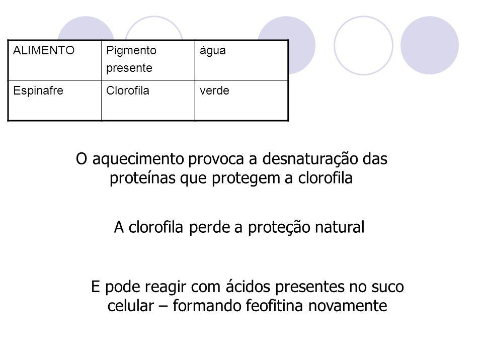 ALIMENTOPigmento presente água EspinafreClorofilaverde O aquecimento provoca a desnaturação das proteínas que protegem a clorofila A clorofila perde a
