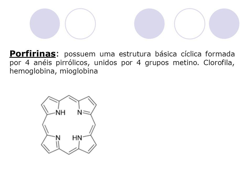 Porfirinas: possuem uma estrutura básica cíclica formada por 4 anéis pirrólicos, unidos por 4 grupos metino. Clorofila, hemoglobina, mioglobina