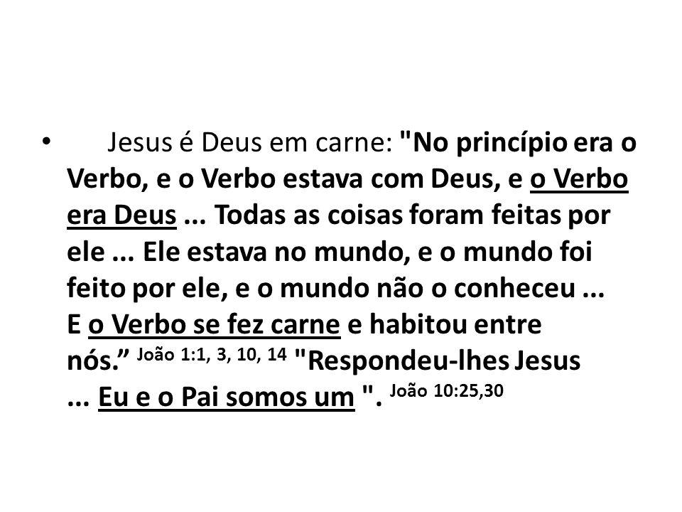 Jesus é Deus em carne: