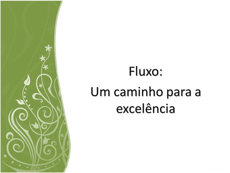 Fluxo: Um caminho para a excelência