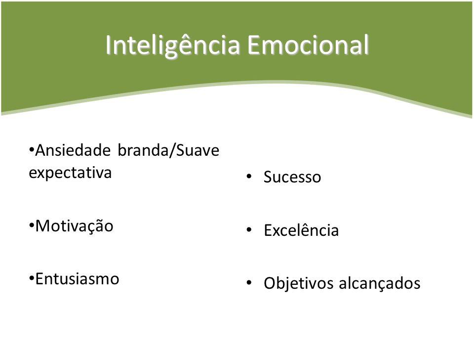 Inteligência Emocional Ansiedade branda/Suave expectativa Motivação Entusiasmo Sucesso Excelência Objetivos alcançados