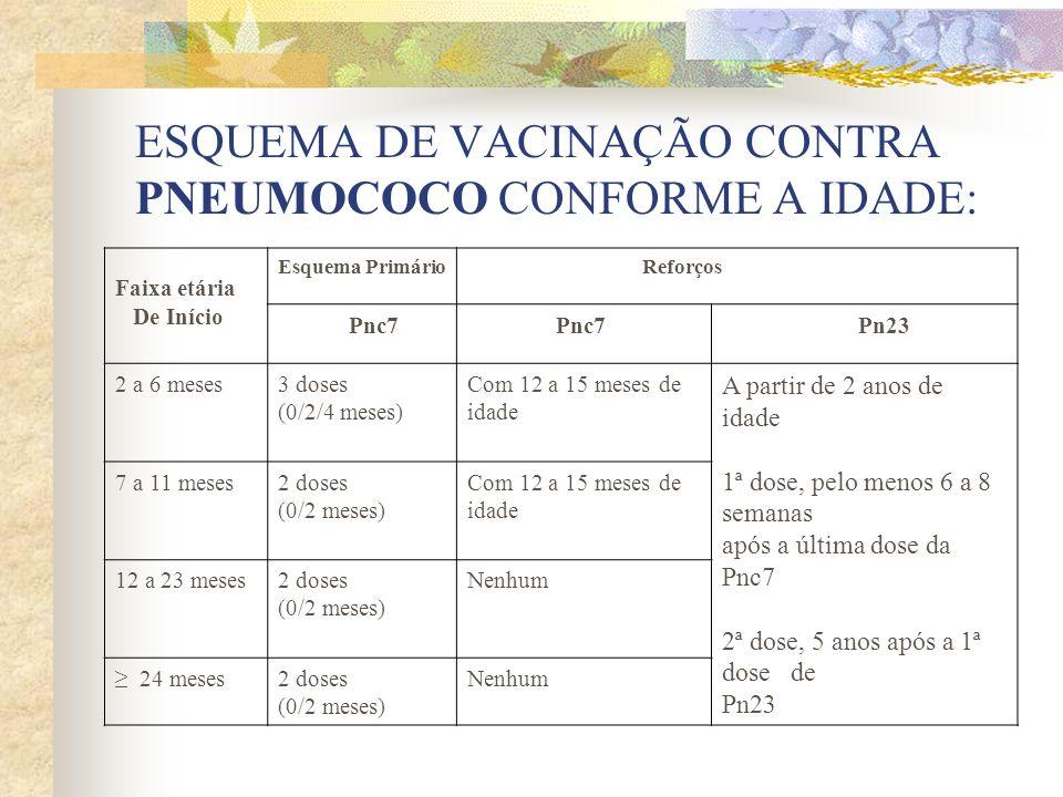 ESQUEMA DE VACINAÇÃO CONTRA PNEUMOCOCO CONFORME A IDADE: Faixa etária De Início Esquema Primário Reforços Pnc7 Pn23 2 a 6 meses3 doses (0/2/4 meses) C