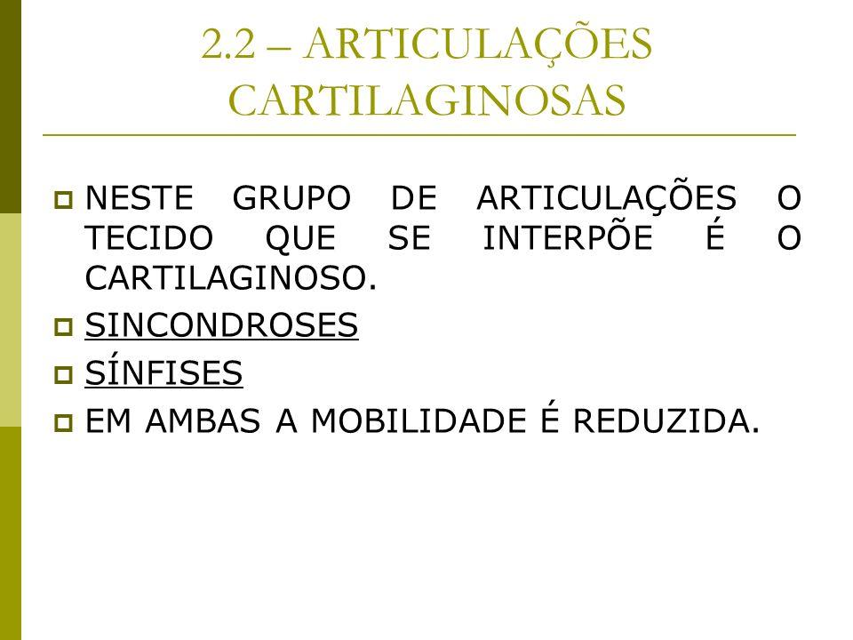2.2 – ARTICULAÇÕES CARTILAGINOSAS NESTE GRUPO DE ARTICULAÇÕES O TECIDO QUE SE INTERPÕE É O CARTILAGINOSO. SINCONDROSES SÍNFISES EM AMBAS A MOBILIDADE