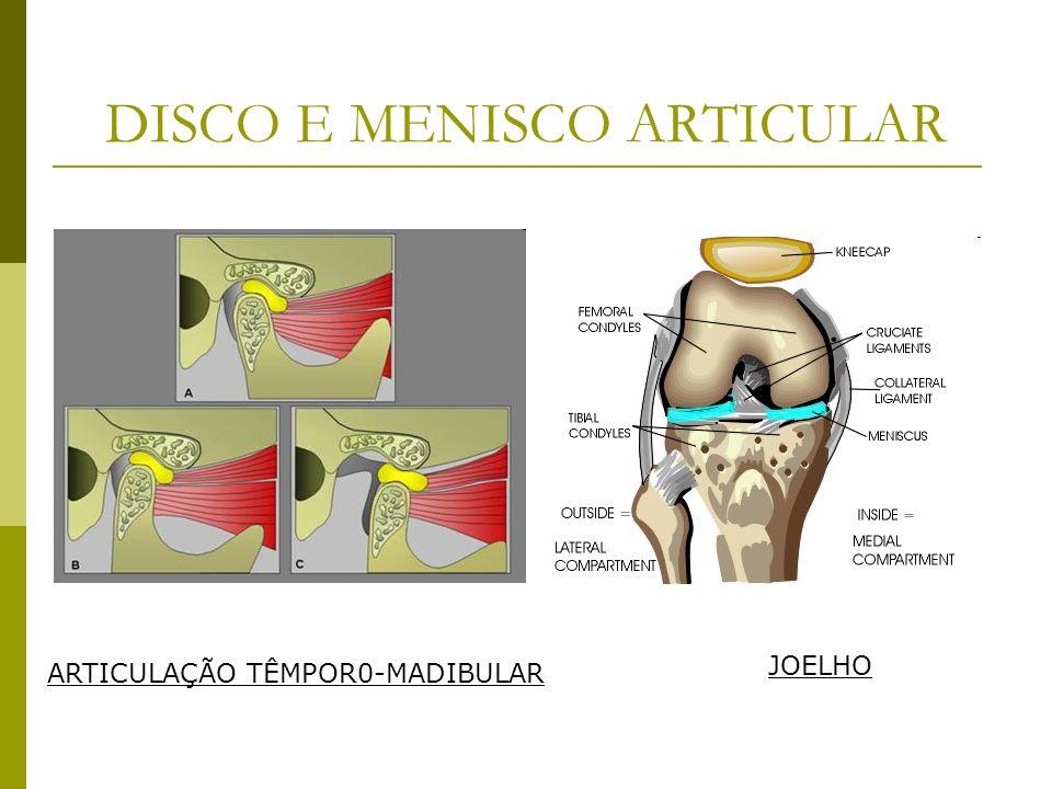 DISCO E MENISCO ARTICULAR ARTICULAÇÃO TÊMPOR0-MADIBULAR JOELHO