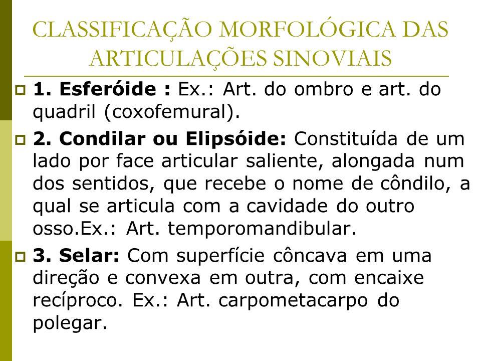 CLASSIFICAÇÃO MORFOLÓGICA DAS ARTICULAÇÕES SINOVIAIS 1. Esferóide : Ex.: Art. do ombro e art. do quadril (coxofemural). 2. Condilar ou Elipsóide: Cons