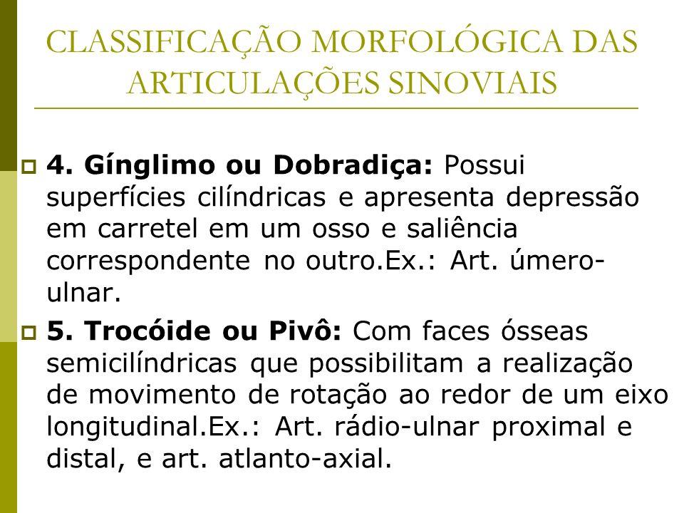 CLASSIFICAÇÃO MORFOLÓGICA DAS ARTICULAÇÕES SINOVIAIS 4. Gínglimo ou Dobradiça: Possui superfícies cilíndricas e apresenta depressão em carretel em um