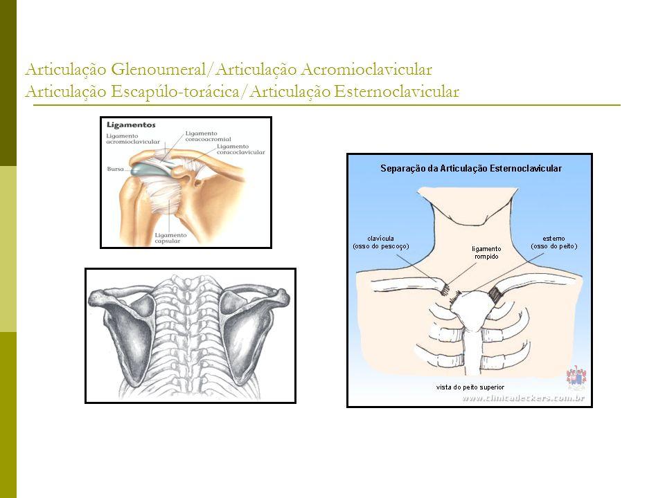 Articulação Glenoumeral/Articulação Acromioclavicular Articulação Escapúlo-torácica/Articulação Esternoclavicular