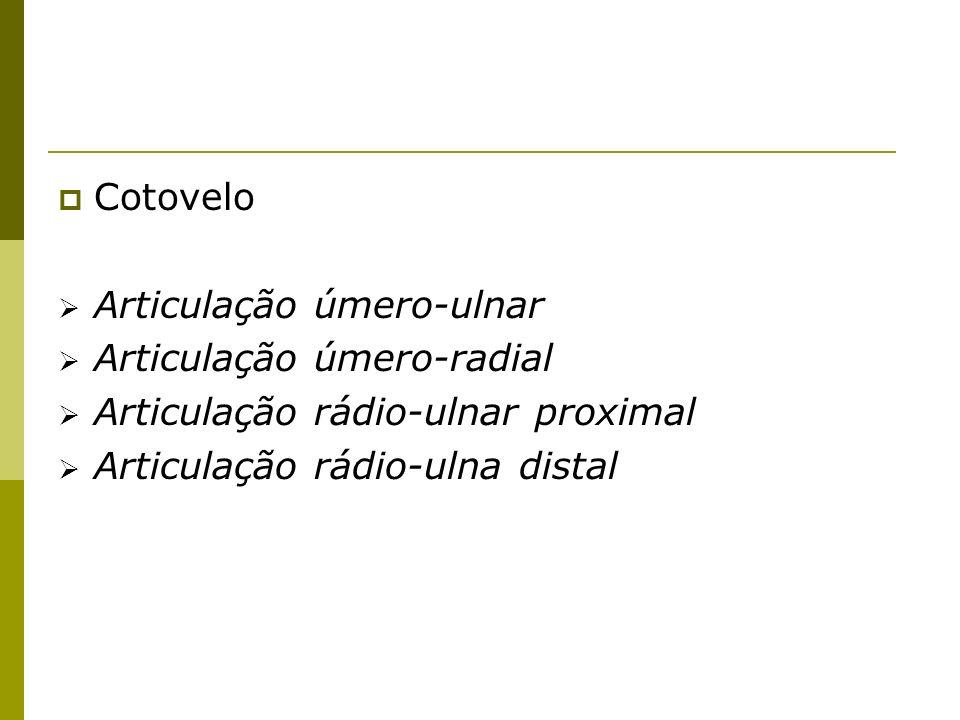 Cotovelo Articulação úmero-ulnar Articulação úmero-radial Articulação rádio-ulnar proximal Articulação rádio-ulna distal