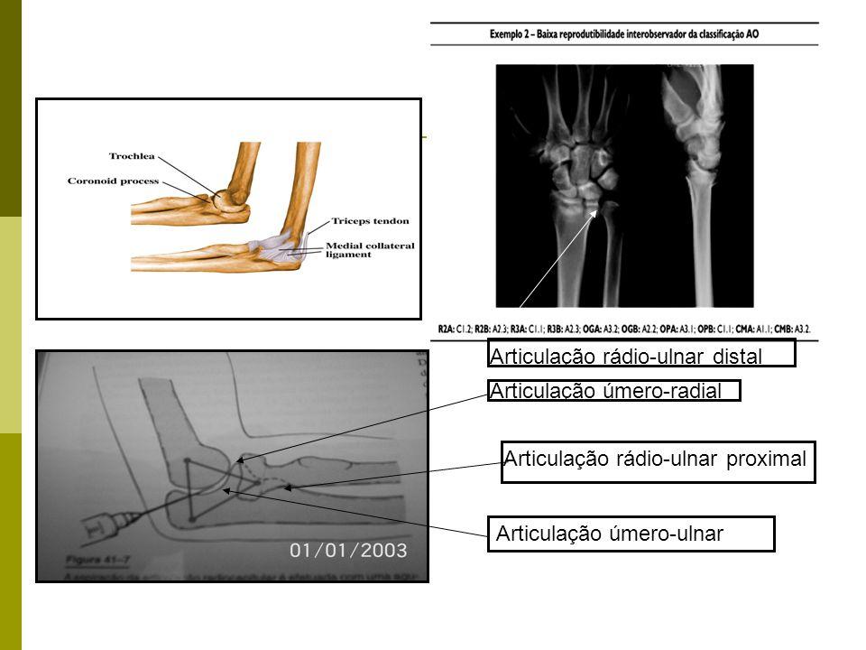 Articulação úmero-ulnar Articulação úmero-radial Articulação rádio-ulnar proximal Articulação rádio-ulnar distal
