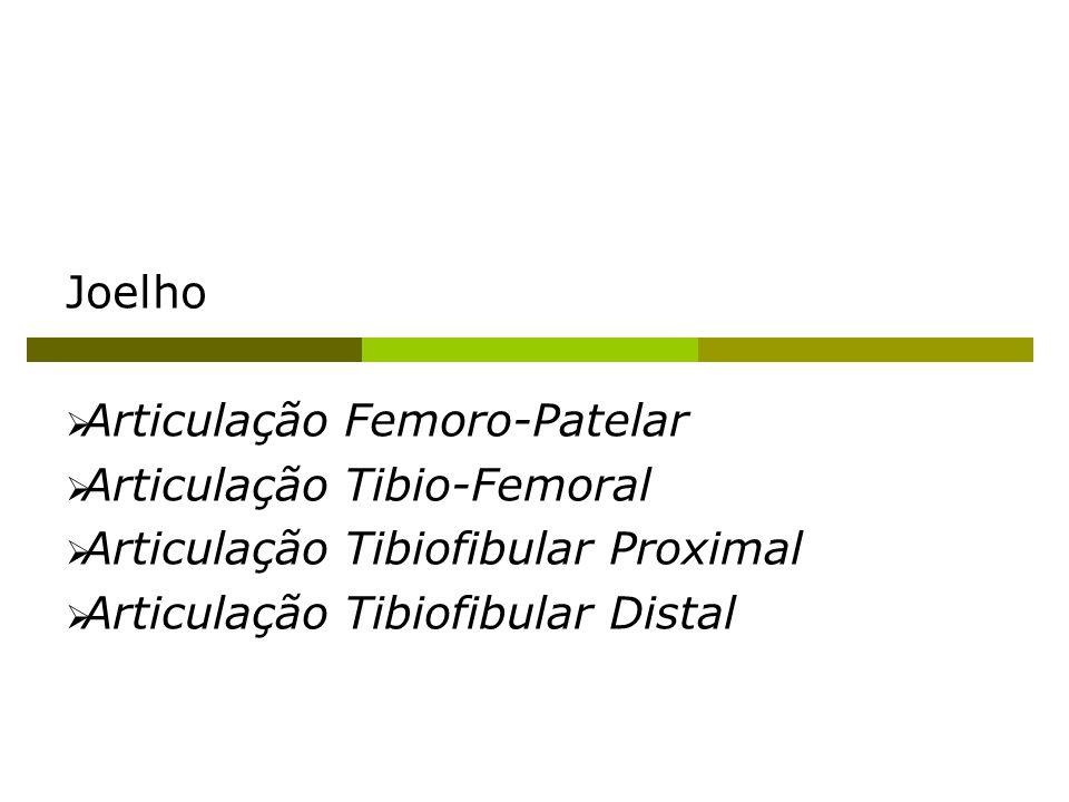 Joelho Articulação Femoro-Patelar Articulação Tibio-Femoral Articulação Tibiofibular Proximal Articulação Tibiofibular Distal
