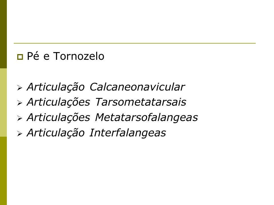 Pé e Tornozelo Articulação Calcaneonavicular Articulações Tarsometatarsais Articulações Metatarsofalangeas Articulação Interfalangeas