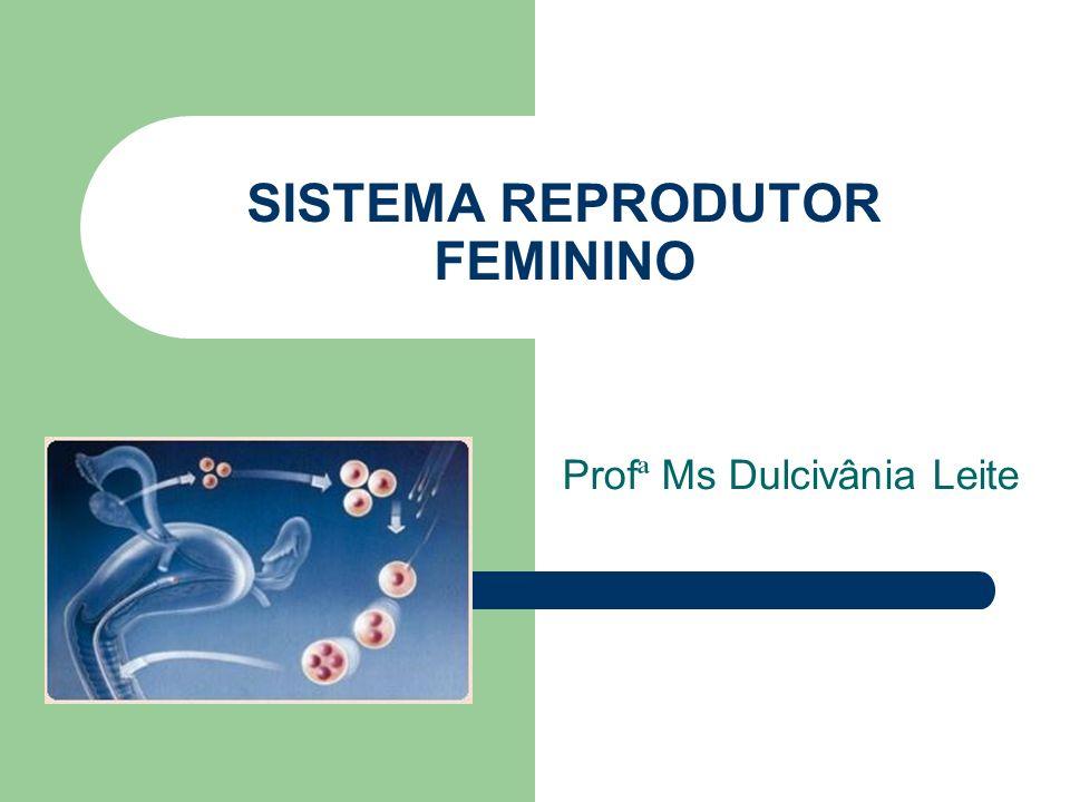 www.bioloja.com SISTEMA REPRODUTOR FEMININO É constituído por: uma vulva (genitália externa), uma vagina, um útero, duas tubas uterinas (ovidutos ou trompas de Falópio), dois ovários.