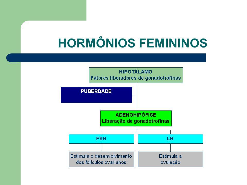 www.bioloja.com HORMÔNIOS FEMININOS