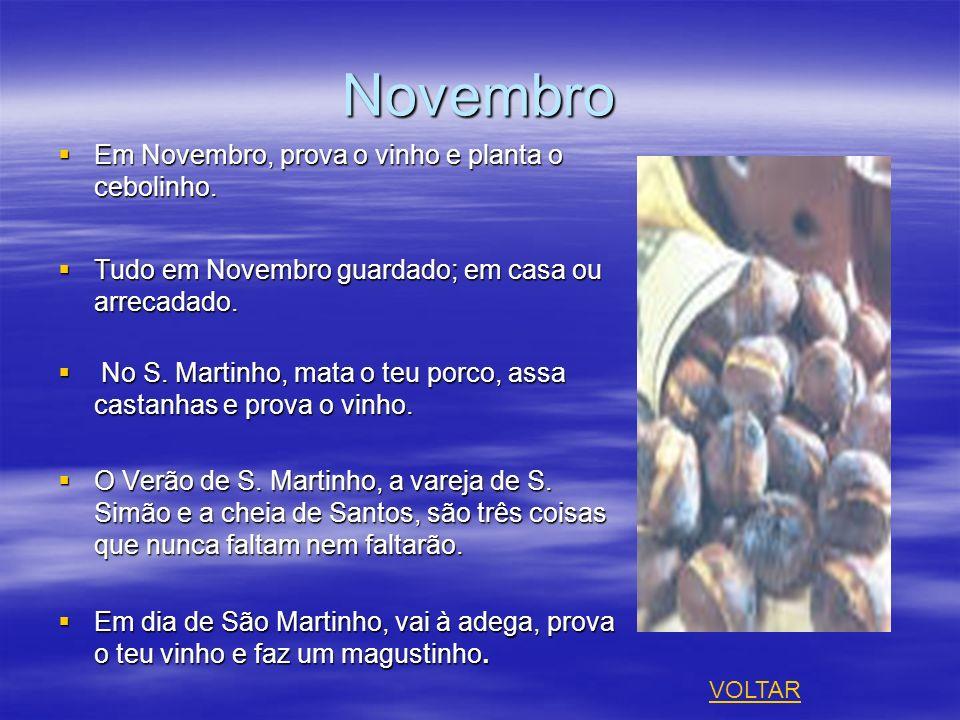 Novembro Em Novembro, prova o vinho e planta o cebolinho. Em Novembro, prova o vinho e planta o cebolinho. Tudo em Novembro guardado; em casa ou arrec