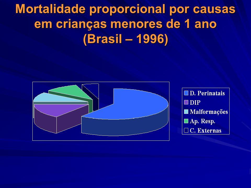 Mortalidade proporcional por causas em crianças menores de 1 ano (Brasil – 1996)