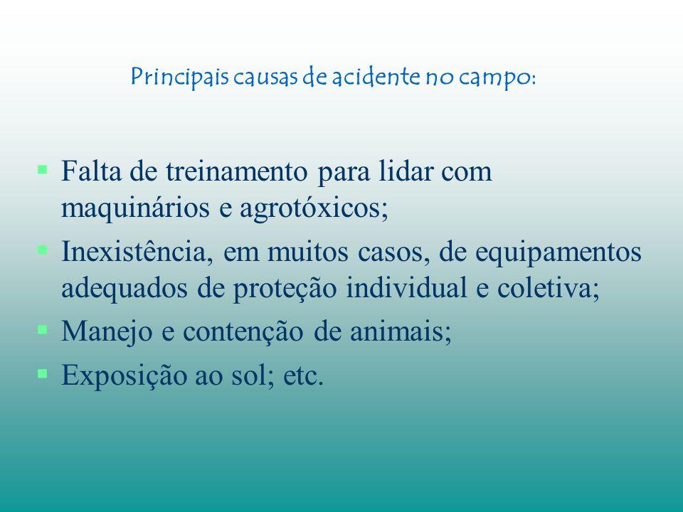 Trato com animais Os animais são úteis ao homem, mas trazem também riscos de acidentes Ex.