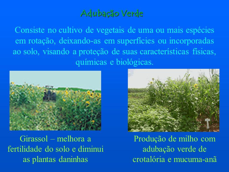 É o sistema de produção que exclui o uso de fertilizantes sintéticos de alta solubilidade, agrotóxicos e aditivos artificiais no solo. Sempre que poss