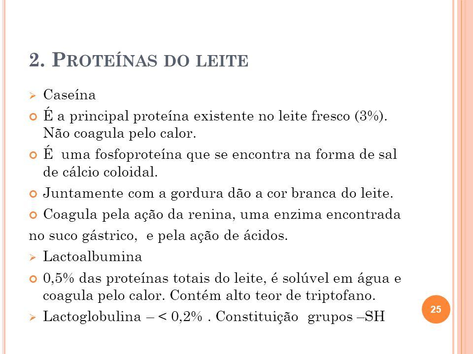2.P ROTEÍNAS DO LEITE Caseína É a principal proteína existente no leite fresco (3%).