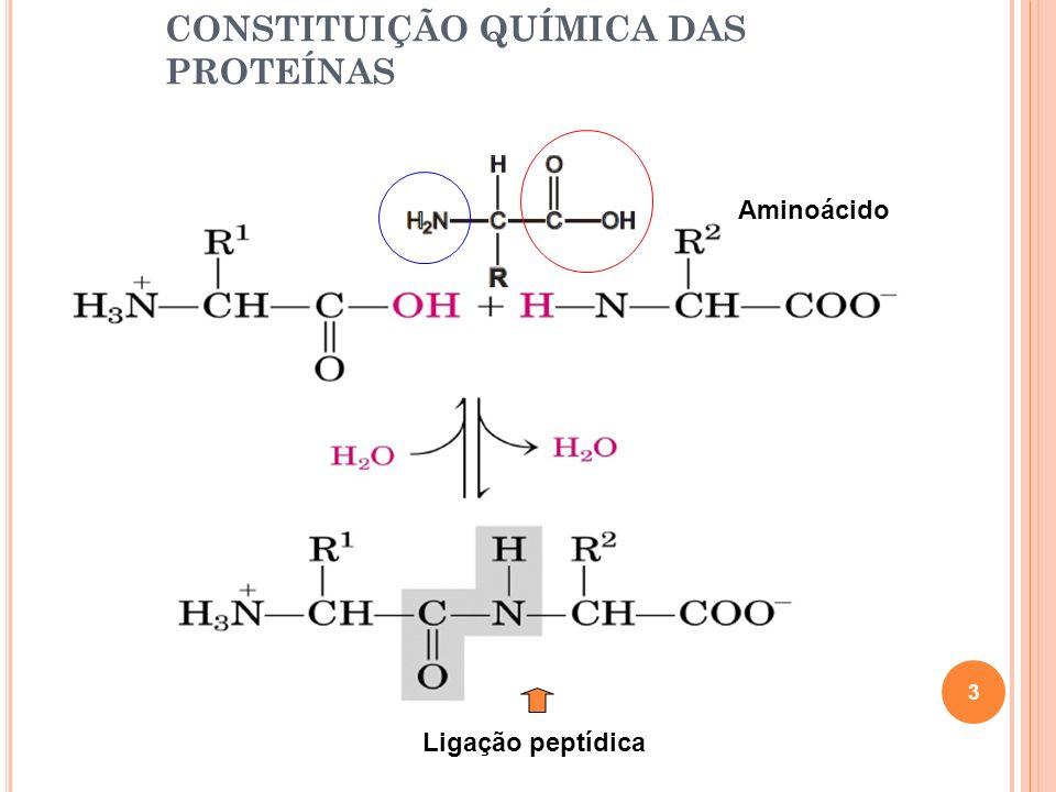 CONSTITUIÇÃO QUÍMICA DAS PROTEÍNAS Aminoácido Ligação peptídica 3