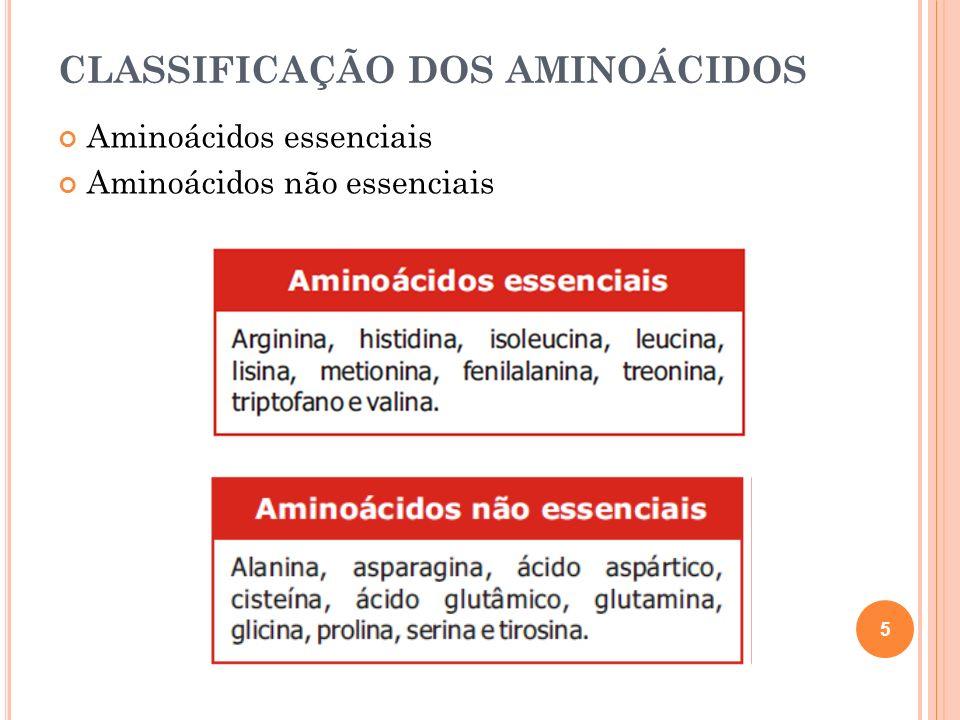 CLASSIFICAÇÃO DOS AMINOÁCIDOS Aminoácidos essenciais Aminoácidos não essenciais 5