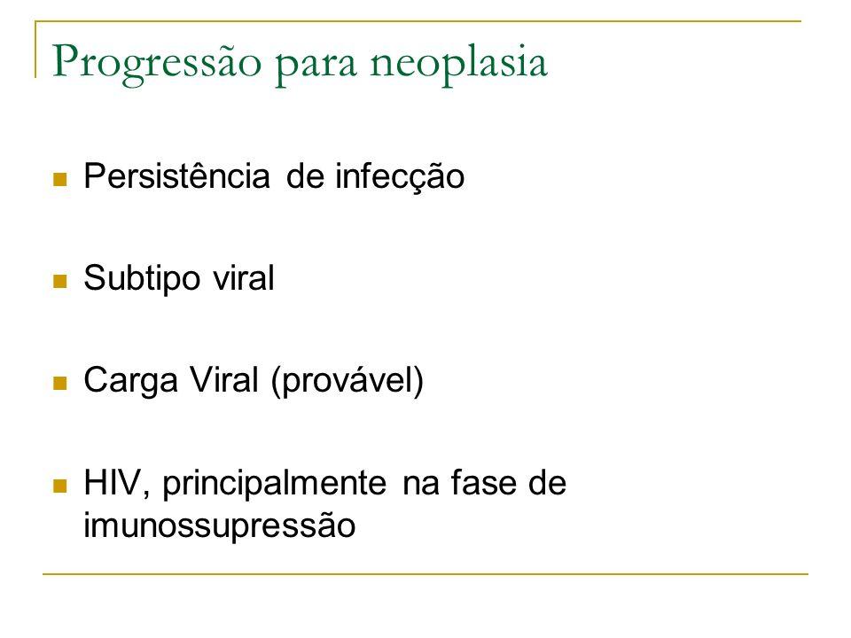 Progressão para neoplasia Persistência de infecção Subtipo viral Carga Viral (provável) HIV, principalmente na fase de imunossupressão