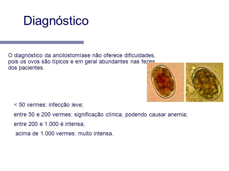 < 50 vermes: infecção leve; entre 50 e 200 vermes: significação clínica, podendo causar anemia; entre 200 e 1.000 é intensa; acima de 1.000 vermes: mu