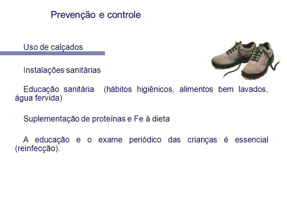 Uso de calçados Instalações sanitárias Educação sanitária (hábitos higiênicos, alimentos bem lavados, água fervida) Suplementação de proteínas e Fe à