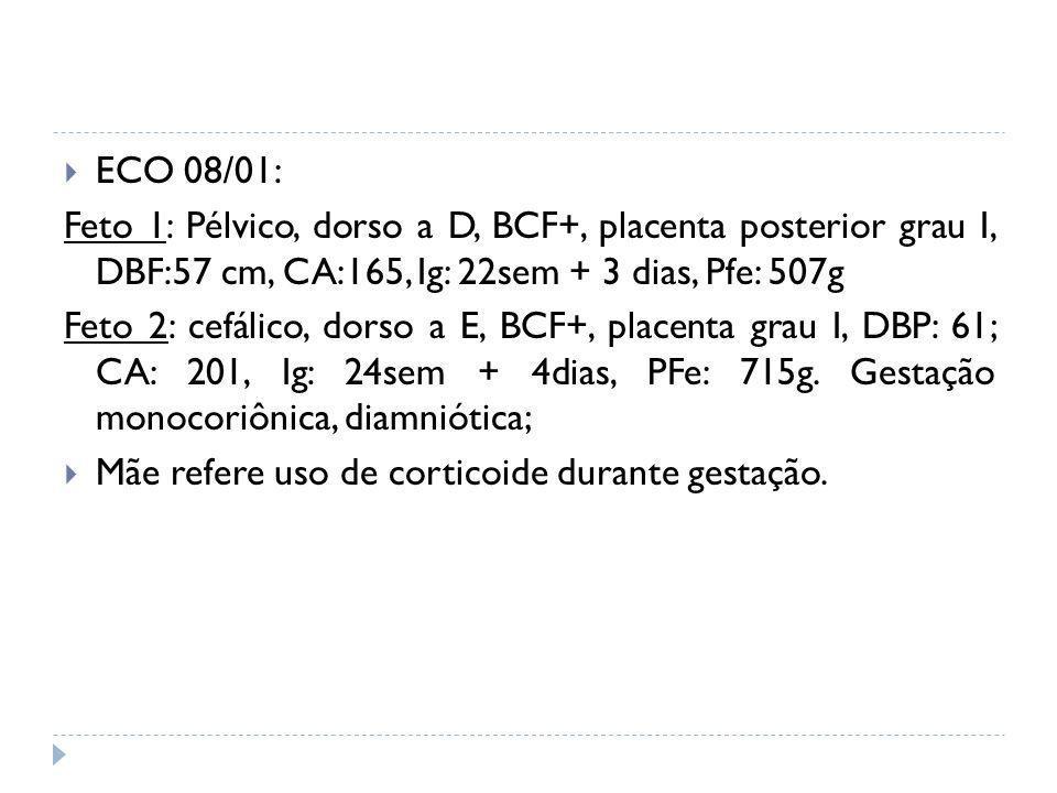 ECO 08/01: Feto 1: Pélvico, dorso a D, BCF+, placenta posterior grau I, DBF:57 cm, CA:165, Ig: 22sem + 3 dias, Pfe: 507g Feto 2: cefálico, dorso a E,