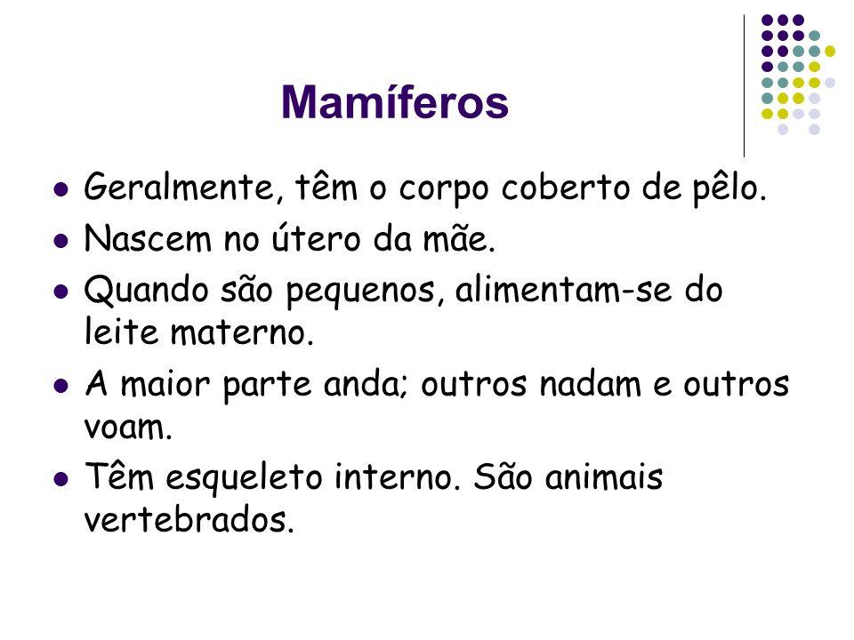 Características dos animais: mamíferos, aves, peixes, répteis, anfíbios e insectos.