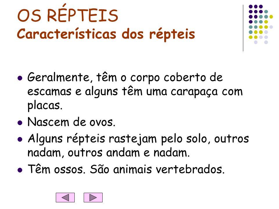 OS RÉPTEIS Características dos répteis Geralmente, têm o corpo coberto de escamas e alguns têm uma carapaça com placas.