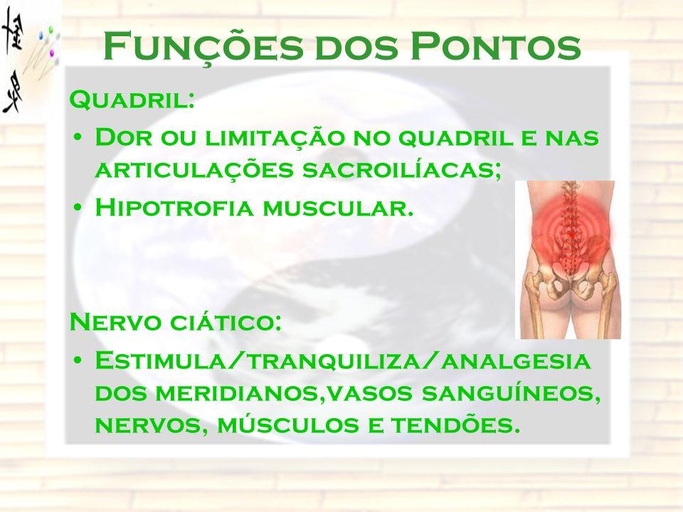 Funções dos Pontos Quadril: Dor ou limitação no quadril e nas articulações sacroilíacas; Hipotrofia muscular. Nervo ciático: Estimula/tranquiliza/anal