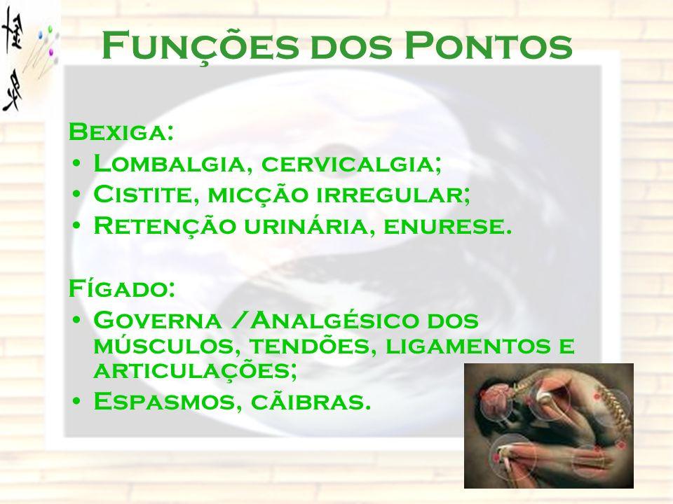 Funções dos Pontos Bexiga: Lombalgia, cervicalgia; Cistite, micção irregular; Retenção urinária, enurese. Fígado: Governa /Analgésico dos músculos, te