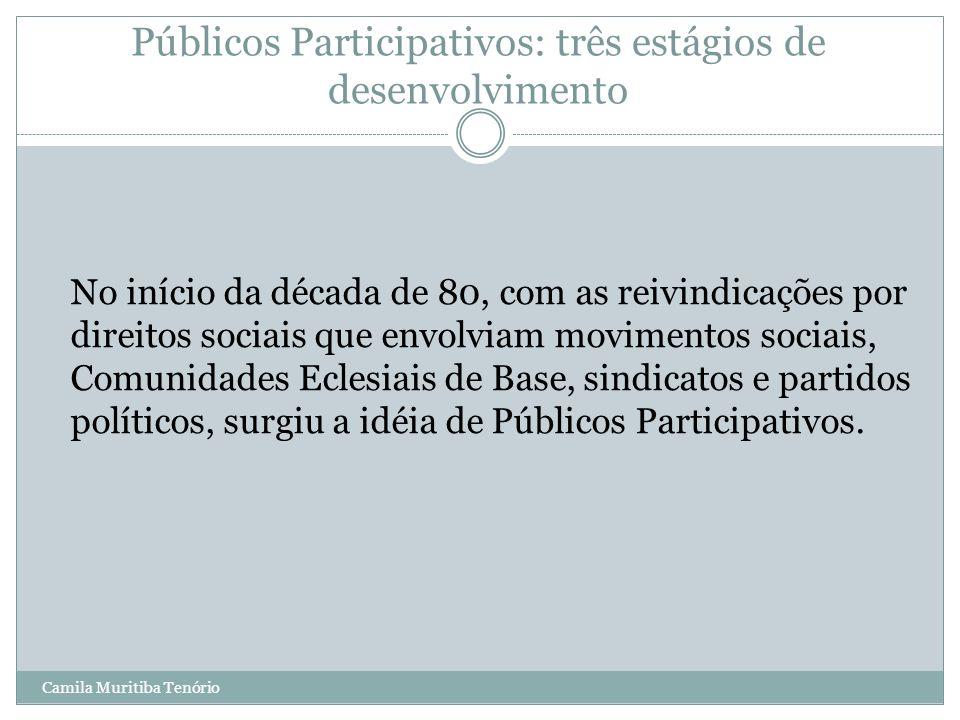 Camila Muritiba Tenório Públicos Participativos: três estágios de desenvolvimento No início da década de 80, com as reivindicações por direitos sociai