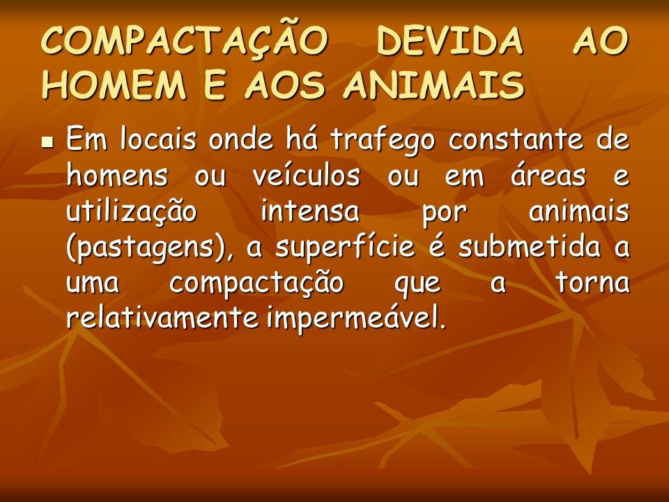COMPACTAÇÃO DEVIDA AO HOMEM E AOS ANIMAIS Em locais onde há trafego constante de homens ou veículos ou em áreas e utilização intensa por animais (past