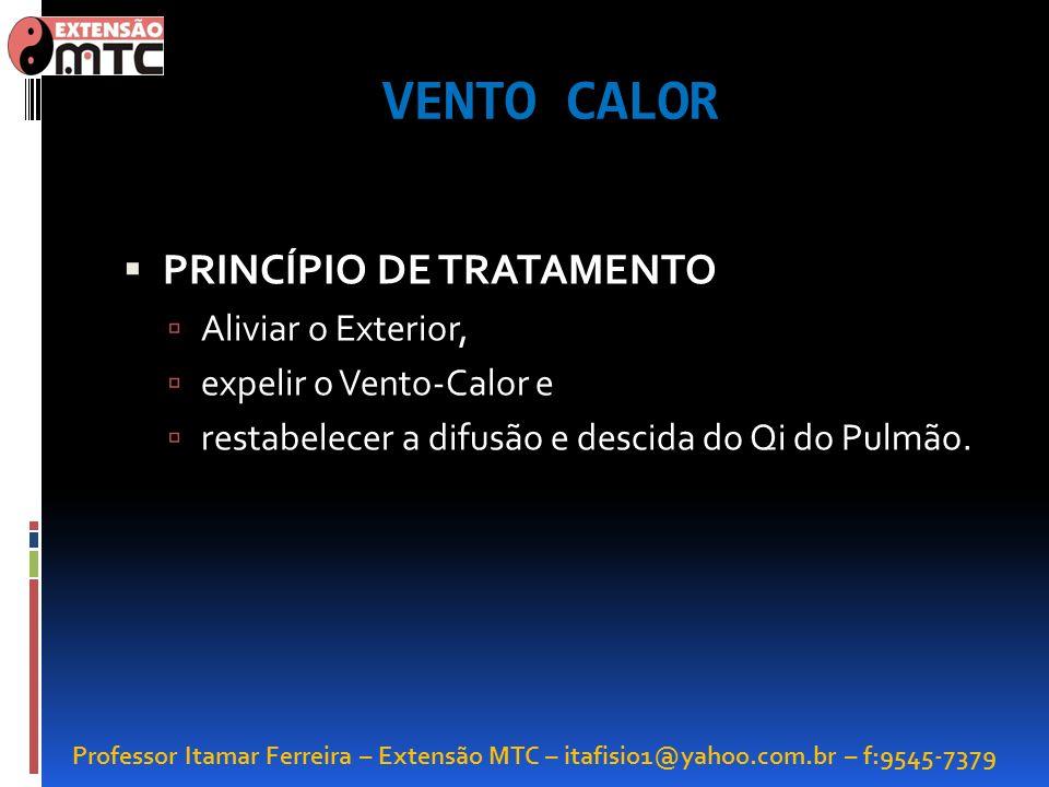 Professor Itamar Ferreira – Extensão MTC – itafisio1@yahoo.com.br – f:9545-7379 VENTO CALOR PRINCÍPIO DE TRATAMENTO Aliviar o Exterior, expelir o Vent