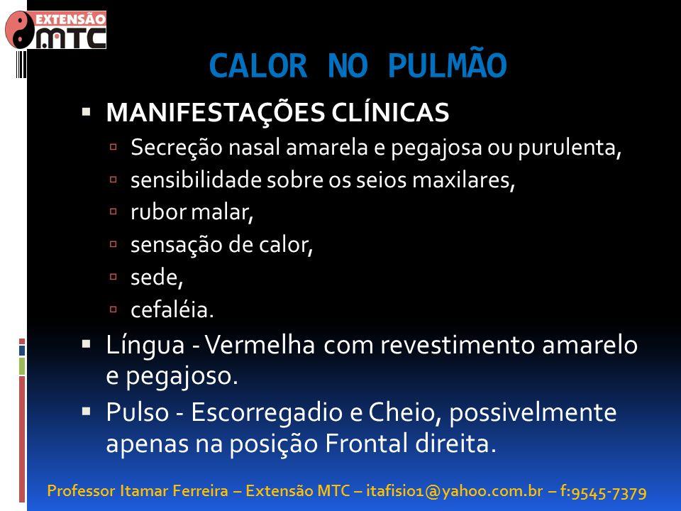 Professor Itamar Ferreira – Extensão MTC – itafisio1@yahoo.com.br – f:9545-7379 CALOR NO PULMÃO MANIFESTAÇÕES CLÍNICAS Secreção nasal amarela e pegajo