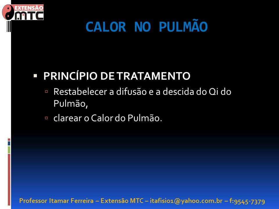 Professor Itamar Ferreira – Extensão MTC – itafisio1@yahoo.com.br – f:9545-7379 CALOR NO PULMÃO PRINCÍPIO DE TRATAMENTO Restabelecer a difusão e a des