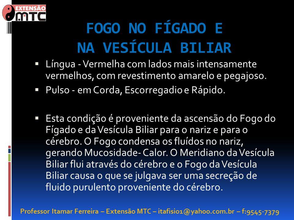 Professor Itamar Ferreira – Extensão MTC – itafisio1@yahoo.com.br – f:9545-7379 FOGO NO FÍGADO E NA VESÍCULA BILIAR Língua - Vermelha com lados mais i