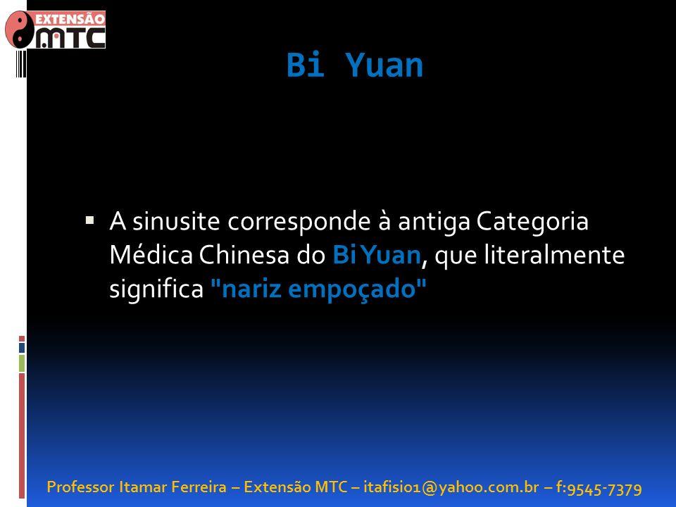 Bi Yuan A sinusite corresponde à antiga Categoria Médica Chinesa do Bi Yuan, que literalmente significa