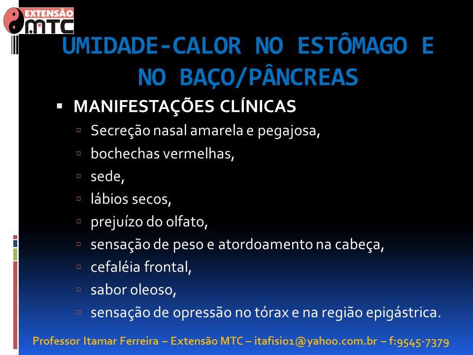 Professor Itamar Ferreira – Extensão MTC – itafisio1@yahoo.com.br – f:9545-7379 UMIDADE-CALOR NO ESTÔMAGO E NO BAÇO/PÂNCREAS MANIFESTAÇÕES CLÍNICAS Se