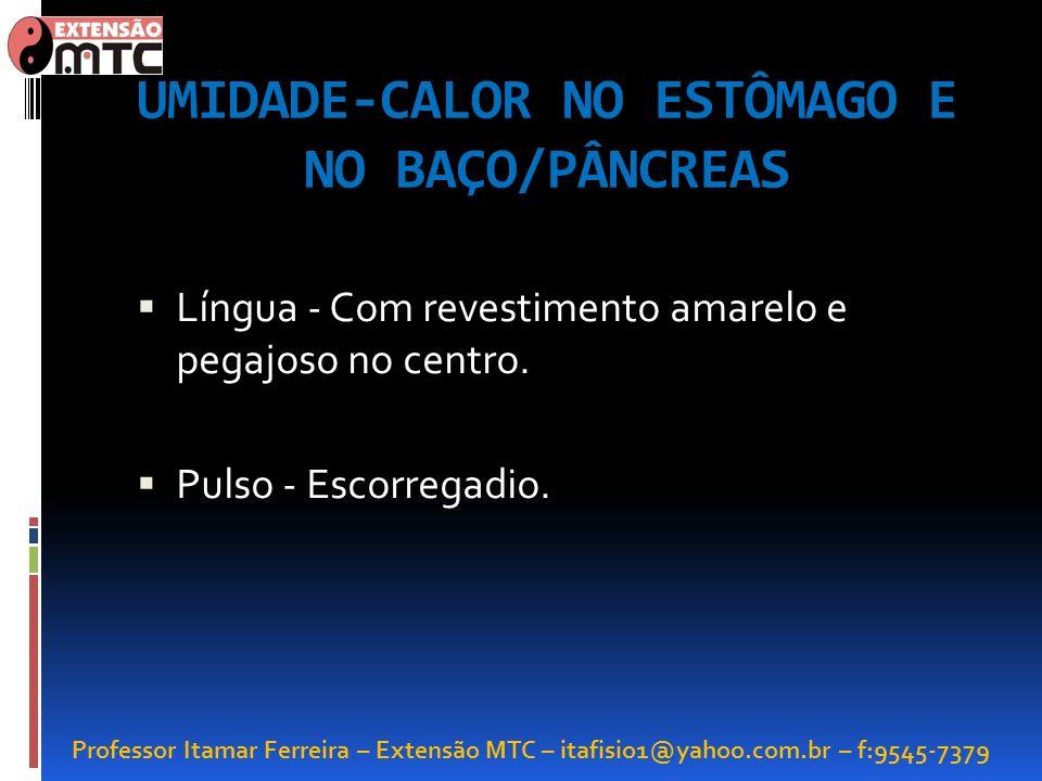 Professor Itamar Ferreira – Extensão MTC – itafisio1@yahoo.com.br – f:9545-7379 UMIDADE-CALOR NO ESTÔMAGO E NO BAÇO/PÂNCREAS Língua - Com revestimento